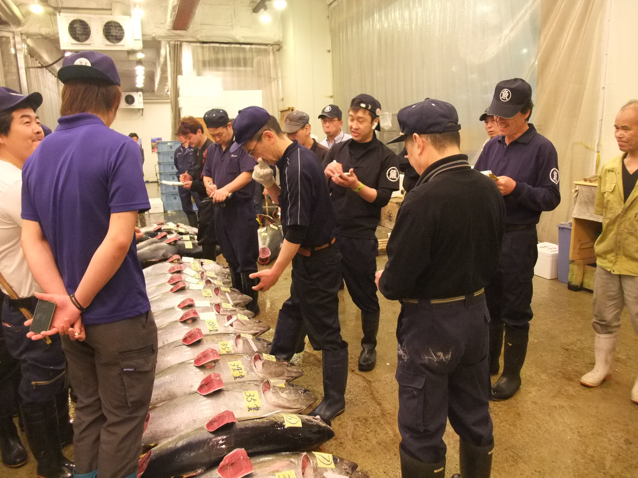 丸魚水産株式会社イメージ